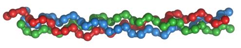 99px-collagentriplehelix1