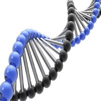 hair-loss-genes-research